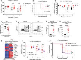 Vietnam And Iraq War Venn Diagram Ketogenic Diet Activates Protective T Cell Responses