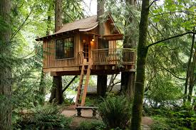 tree house pictures. TreeHouse Photos At Treehouse Point In Fall City Washington Tree House Pictures R