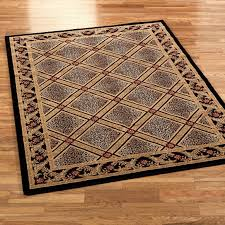 amazing homey area rugs rochester ny fetching picture 15 of 45 luxury area rugs rochester ny remodel