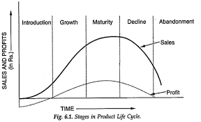 Product Life Cycle Stages Examples Strategies Definition
