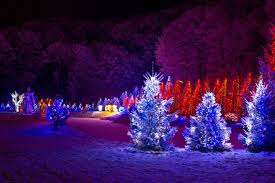 christmas lights outdoor trees warisan lighting. Large-large Size Of Divine Lights On Outdoor Trees Warisan Lighting For Christmas O