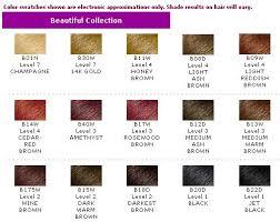 Brown Hair Color Chart Clairol Natural Hair Dye 2018