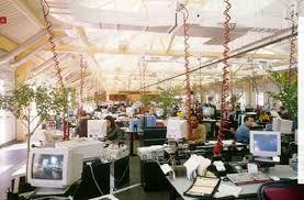 Офис теплица Сделано в Японии Зеленый Путь Идея озеленения офиса витает в воздухе и не только в Японии Так например выглядит один из офисов американской компании sei investments