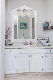 Bathroom Closet Organization Ideas Gorgeous Bathroom Organization Clean And Scentsible