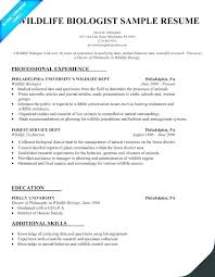 Resume For Pharmacy Technician Computer Technician Resume Examples ...