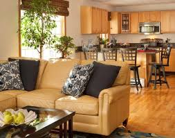 right sofa color for your living room