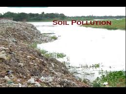 essay about soil pollution 2017 causes and effects of soil pollution the main reason why the soil becomes contaminated is due to the presence of man made waste essay about soil