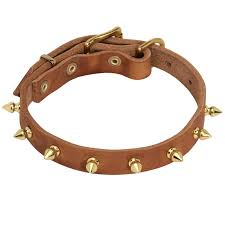 designer leather collar for dog