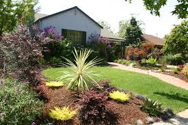 Small Picture drought tolerant landscaping ideas california Brick path and