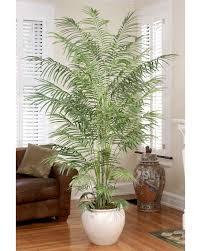 9 silk erfly palm tree 9 ft tall