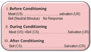 Classical Conditioning In The Classroom What Is Classical Conditioning Theory Definition And
