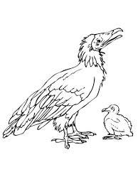 Dodo Met Kuiken Kleurplaat Gratis Kleurplaten Printen