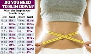 Healthy Waist Size Chart Why Your Waist Size Shows Your Heart Risk Not Your Bmi