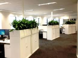 hire office office plant hire sydney perfection plant hire