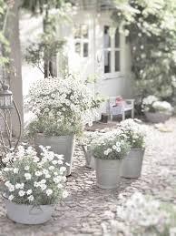 Znalezione obrazy dla zapytania summer garden black and white