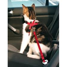 <b>Trixie автомобильный ремень</b> безопасности со шлейкой для ...