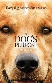 A Dogs Purpose 2017 Imdb