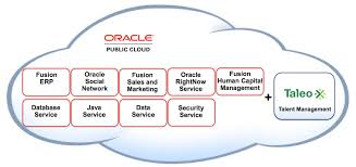 News Analysis The Implications Of Oracles Acquisition Of