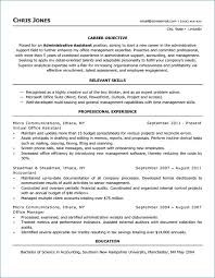 Functional Resume Stay At Home Mom Examples From Stay At Home Mom