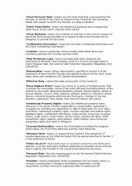 Information Technology Contract Template Elegant Contract ...
