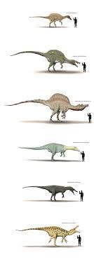 Dinosaur Sizes Comparison Chart Dinosaur Human Size Chart By Hyrotrioskjan I Love The Way