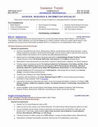 Government Resume Format Inspirational Government Resume Format