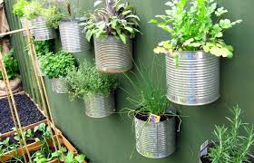 container gardening for beginners. Type Of Plant Container Gardening For Beginners N