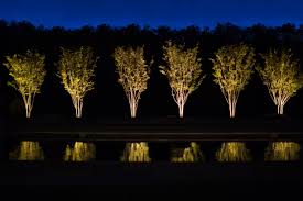 landscape lighting trees. in fact we recognize that tree species require different landscape lighting techniques trees