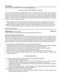Project Manager Resume Sample Doc Stunning ☾ 48 Sample Resume For Project Manager Position