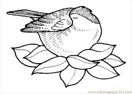 Small Picture Coloring Pages Bird Nest 3 Coloring Page Free Trees Coloring