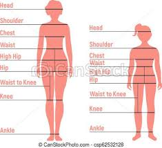 Woman And Girl Size Chart Human Front Side Silhouette Isolated On White Background Vector Illustration