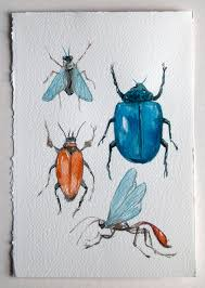 insects and bugs watercolor painting small watercolor in blue and terracotta