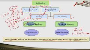 Rational Numbers Venn Diagram Worksheet Classroom Diagram With Rational Great Installation Of Wiring Diagram