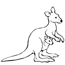 Small Picture Australian Kangaroo and Baby Kangaroo Coloring Page NetArt