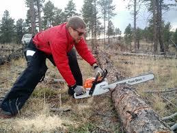stihl chainsaws farm boss. stihl ms 271 farm boss review chainsaws