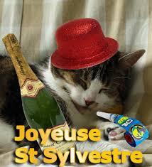 """Résultat de recherche d'images pour """"gifs animés gratuits de la st sylvestre, bon réveillon du nouvel an"""""""