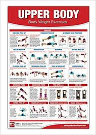 Chest Chart Gym Bodyweight Training Poster Chart Upper Body Chest