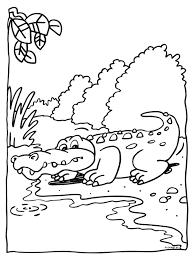 Kleurplaat Krokodil In De Dierentuin Kleurplatennl