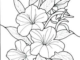 Coloring Pages Printable Flower Coloring Sheets For Preschoolers
