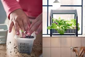 ikea indoor gardening kit 2