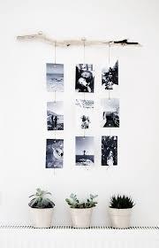 tree branch family photos wall decor