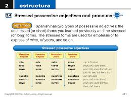 Spanish Has Two Types Of Possessive Adjectives The