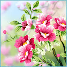8 top risks of flowers wallpapers flowers