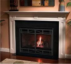 Multi Sided Fireplace U2013 PopinshopmeFireplace Heatilator