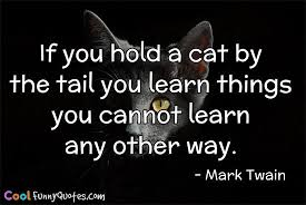 40 Cat Quotes That Are Brutally True