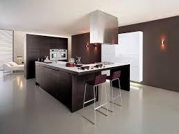 Kitchen Cabinet Design Program Cabinet Design Software Free Online Crowdsmachinecom
