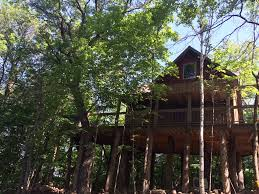 I Would Love To Stay At This Tree House Hotel  Tree House Point Treehouse Lake District