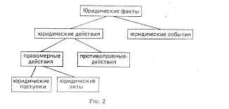 Реферат Юридические факты com Банк рефератов  Юридические факты