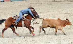 Inicia hoy en Cuba Feria agropecuaria internacional dedicada a la ganadería bovina