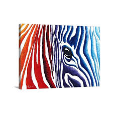 colourful zebra by megan duncanson painting on wrapped canvas